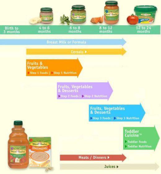 infant food charts