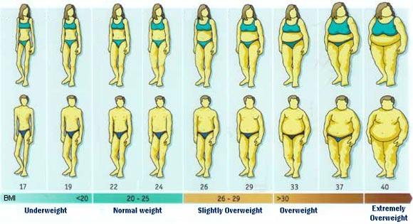 Bmi Bmi Index Body Mass Index Bm I Bmi Chart Bmi Diagram