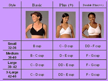 Visual description of different boob sizes