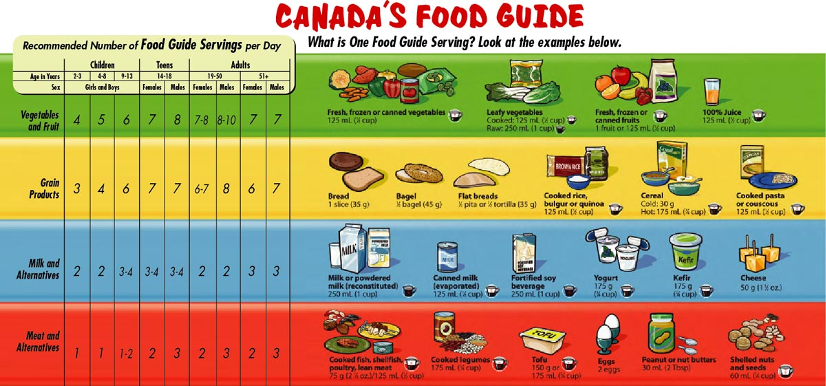Canada Food Guide Healthy Lunches