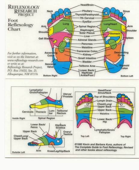 Foot Chart Feet Map Map Of Accupuncture Points Foot Map
