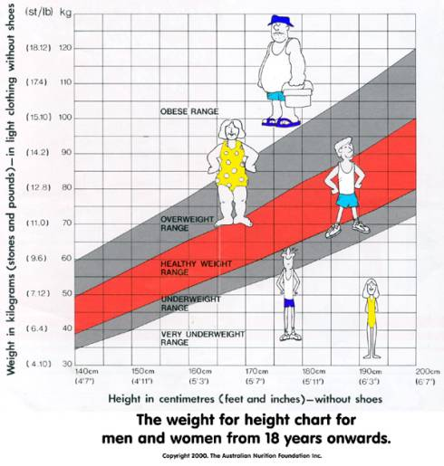 Height And Weight Height To Weight Chart Height Weight Weight