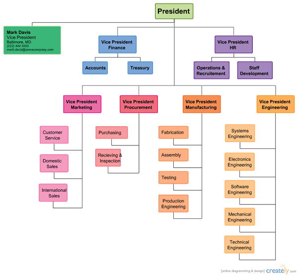organization chart template  examples of organizational charts    notices  organizational chart template