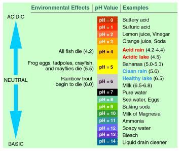 Ph scale ph scale ph scale diagram ph value ph value chart