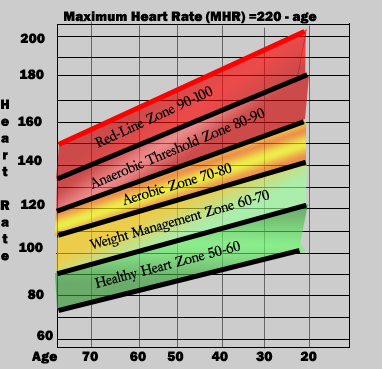 Heart Rate Chart Pulse Rate Chart Another Popular Chart From