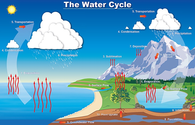 water cycle with labels - water damage los angeles